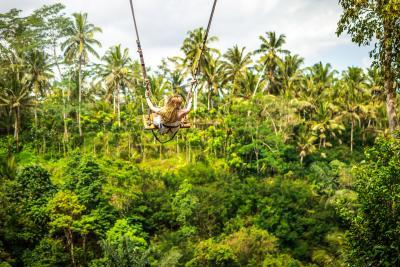 초록빛 자연에 둘러싸인 평화로운 시골 마을 '우붓(Ubud)'이다. 요가, 정글, 트레킹 등 자연을 만끽할 수 있는 볼거리와 즐길거리가 많은 곳이다. 공항 가까이에 있는 꾸따에서 차를 타고 이동하면 우붓까지 약 1시간 소요된다.  (사진 출처: unsplash)