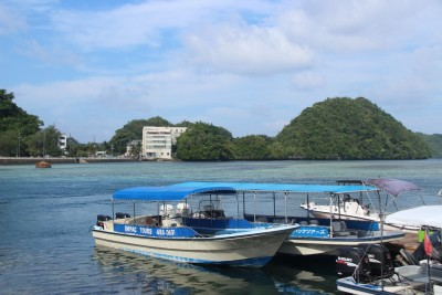 팔라우 4- 태평양전쟁의 격전지 펠렐리우 섬을 찾다